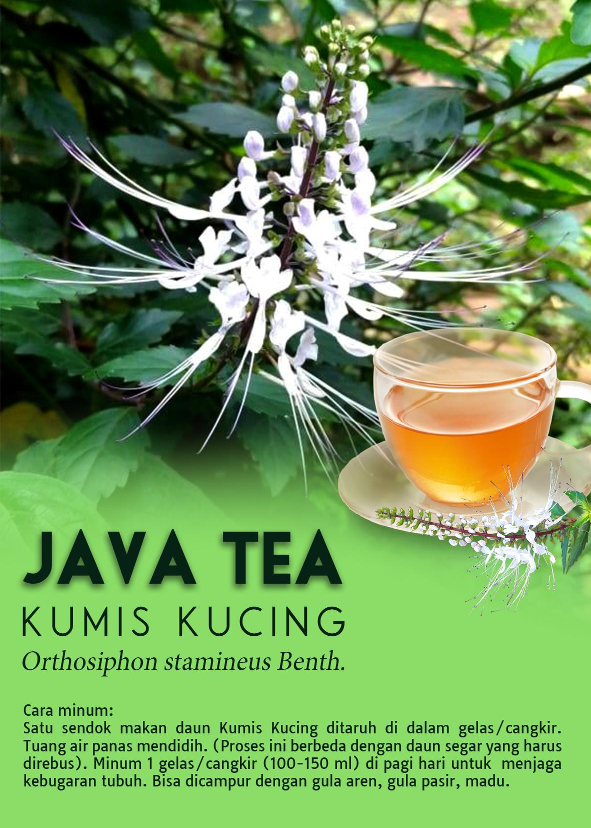 java tea depan 02