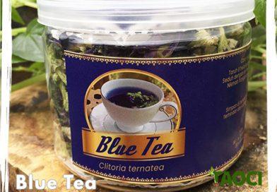 Jual Blue Tea Bunga Telang