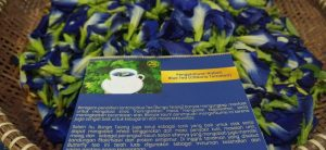 blue tea minuman anak e1598953820451