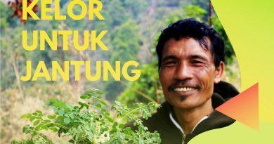 Seorang Petani Lemah Jantung, Kini Sehat Karena Rajin Minum Kelor