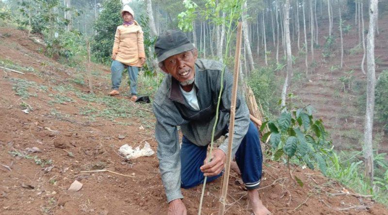 Inilah Solusi Pertanian di Lahan Kritis Kawasan Bandung Utara