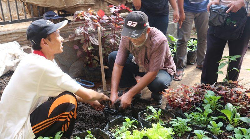 Pemuda Garut Belajar Pembibitan Herbal dan Tani Pekarangan