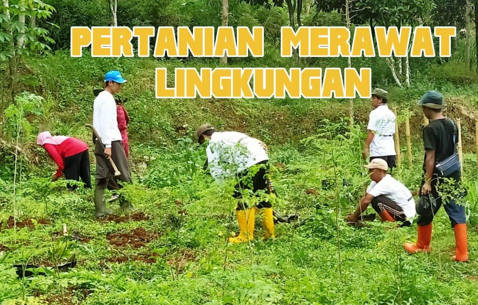 pertanian merawat lingkungan hidup odesa