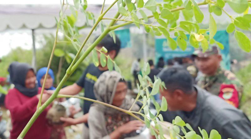 Bandung Utara Erosi, Mahasiswa-Dosen Bagikan Bibit Agroforestry