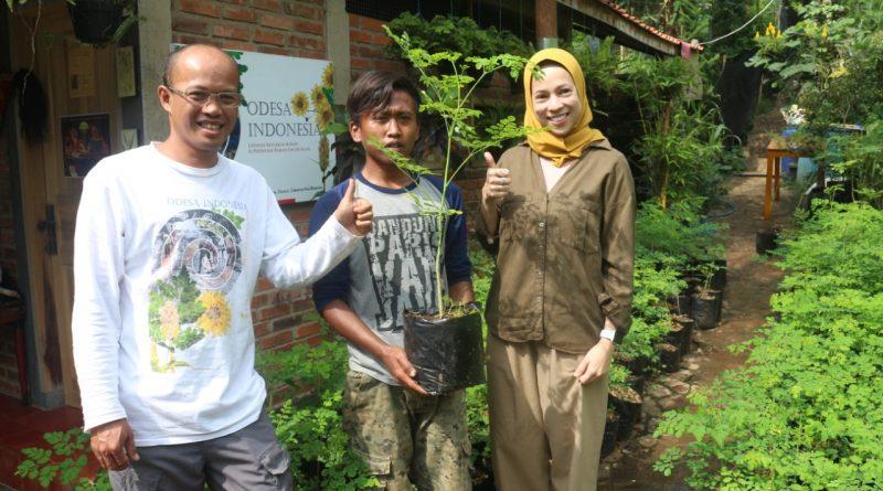 Pohon dan Pakaian; Sebuah Tindakan Kemanusiaan