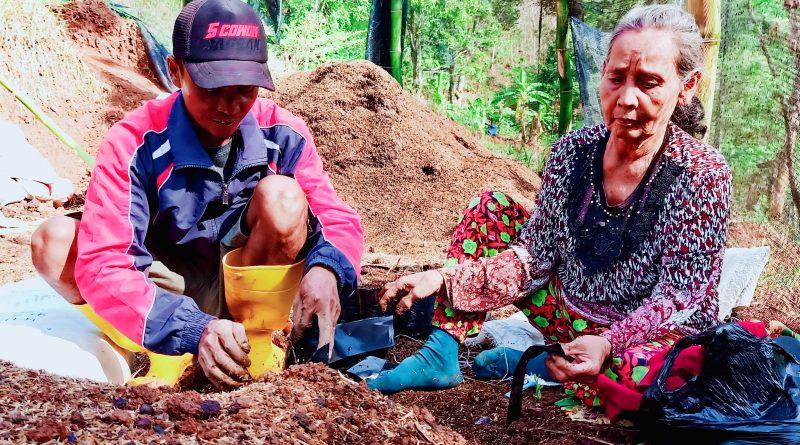 Pembibitan Sebagai Syarat Dasar Perbaikan Kawasan Bandung Utara