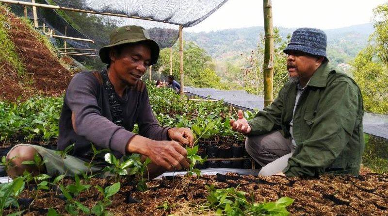 Pemerintah Harus Mendirikan Pembibitan Tiap Desa untuk Kawasan Bandung Utara
